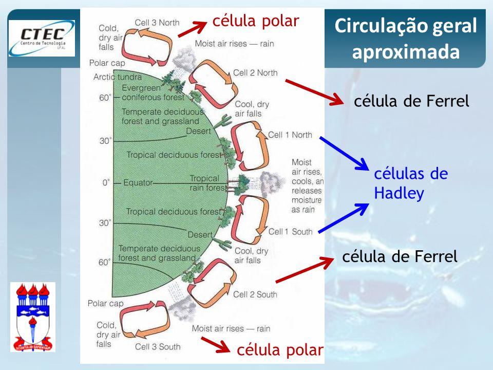 células de Hadley célula polar célula de Ferrel célula polar Circulação geral aproximada