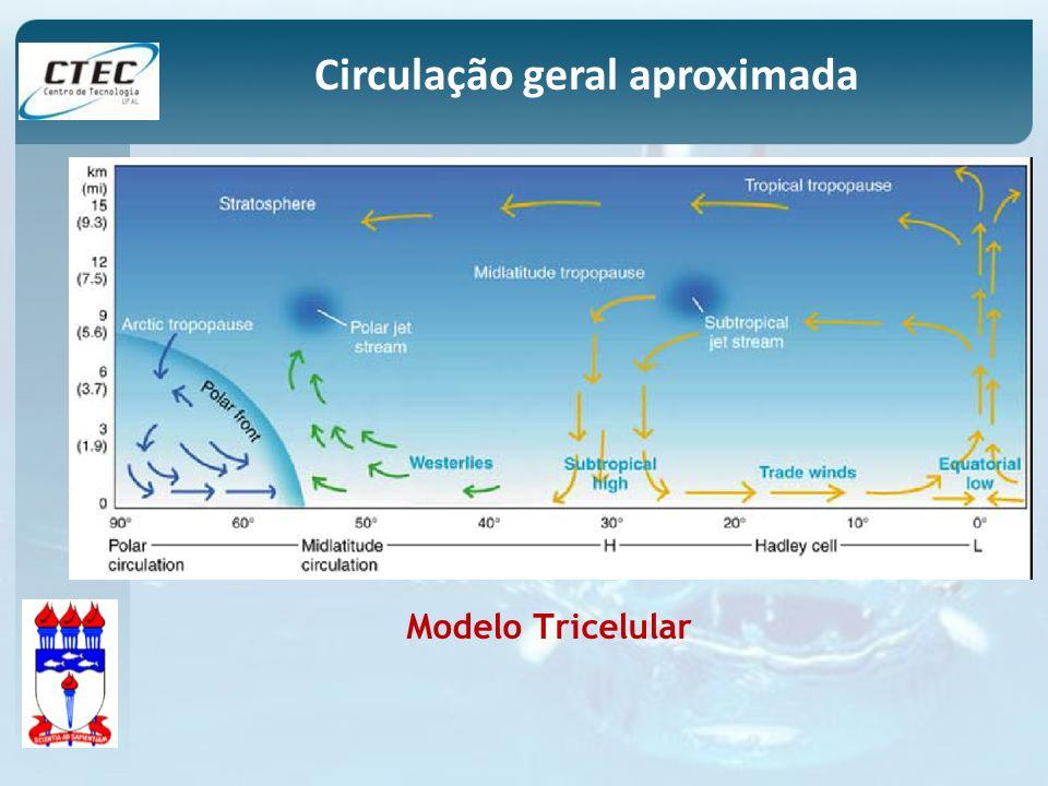 Modelo Tricelular