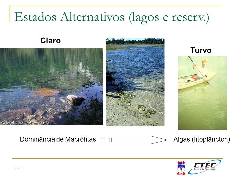 11:11 Claro Turvo Algas (fitoplâncton)Dominância de Macrófitas Estados Alternativos (lagos e reserv.)