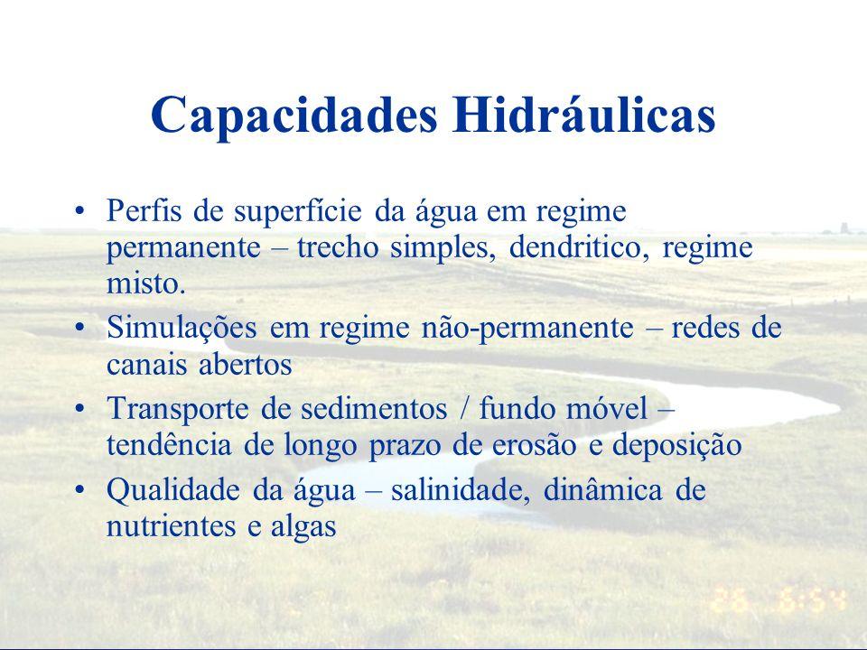 Hydraulic Analysis Components Interface Gráfica –Dados de entrada –Saída