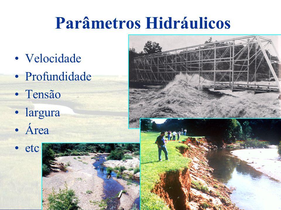 Informações Hidráulicas Perfis de superfície da água Parâmetros hidráulicos