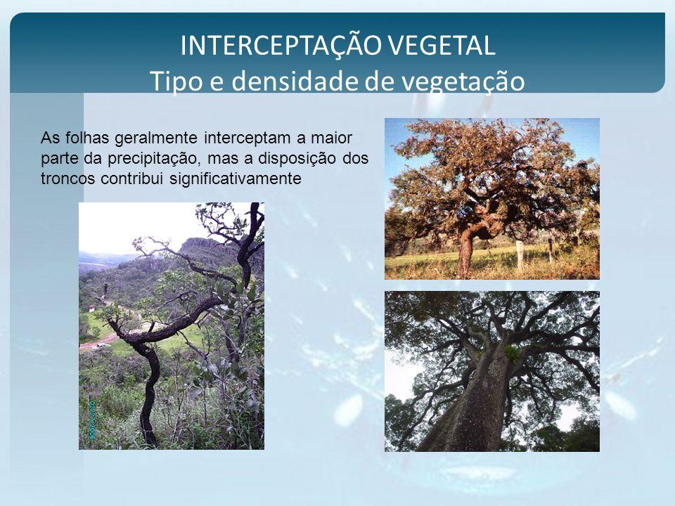 INTERCEPTAÇÃO VEGETAL Tipo e densidade de vegetação As folhas geralmente interceptam a maior parte da precipitação, mas a disposição dos troncos contr