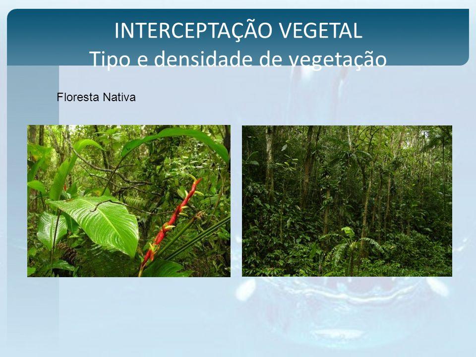 INTERCEPTAÇÃO VEGETAL Tipo e densidade de vegetação Floresta Nativa
