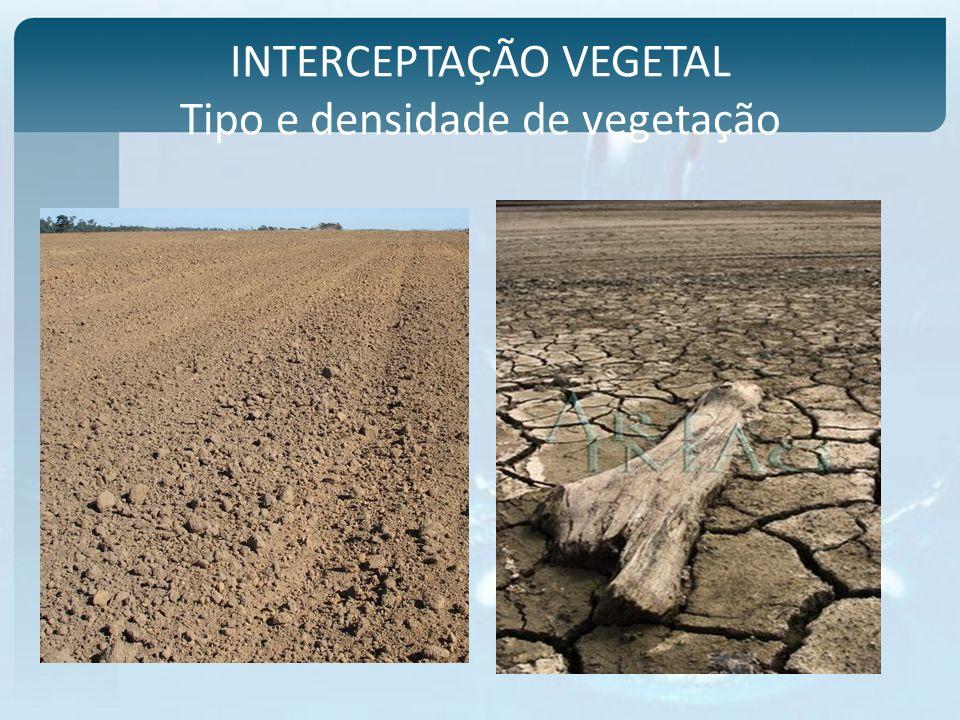 INTERCEPTAÇÃO VEGETAL Tipo e densidade de vegetação