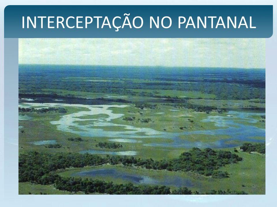 INTERCEPTAÇÃO NO PANTANAL