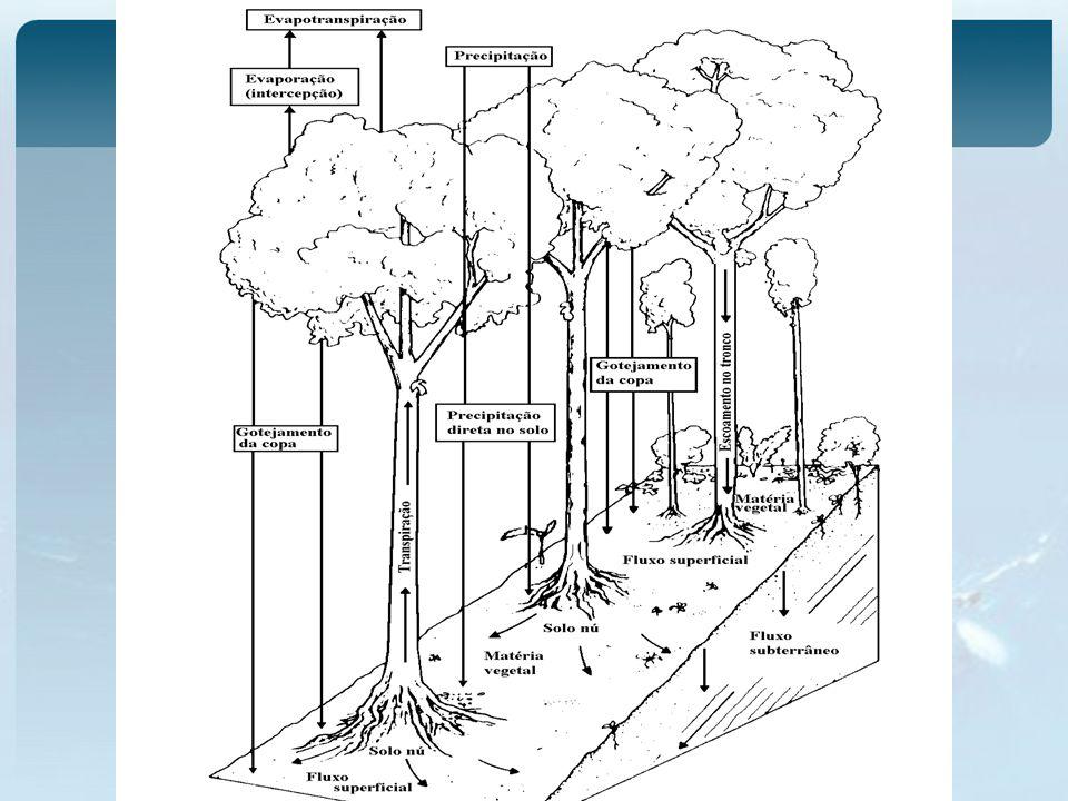 Formulação em Modelos Conceituais Vegetação como um reservatório com capacidade máxima – de acordo com o tipo de cobertura Vegetação Simulação de Precipitação retira água até atingir a sua capacidade máxima período seco Depleção do reservatório (evaporação e evapotranspiração) Vegetação analise do processo de transformação de P em Q dentro de uma visão macroespacial das bacias.
