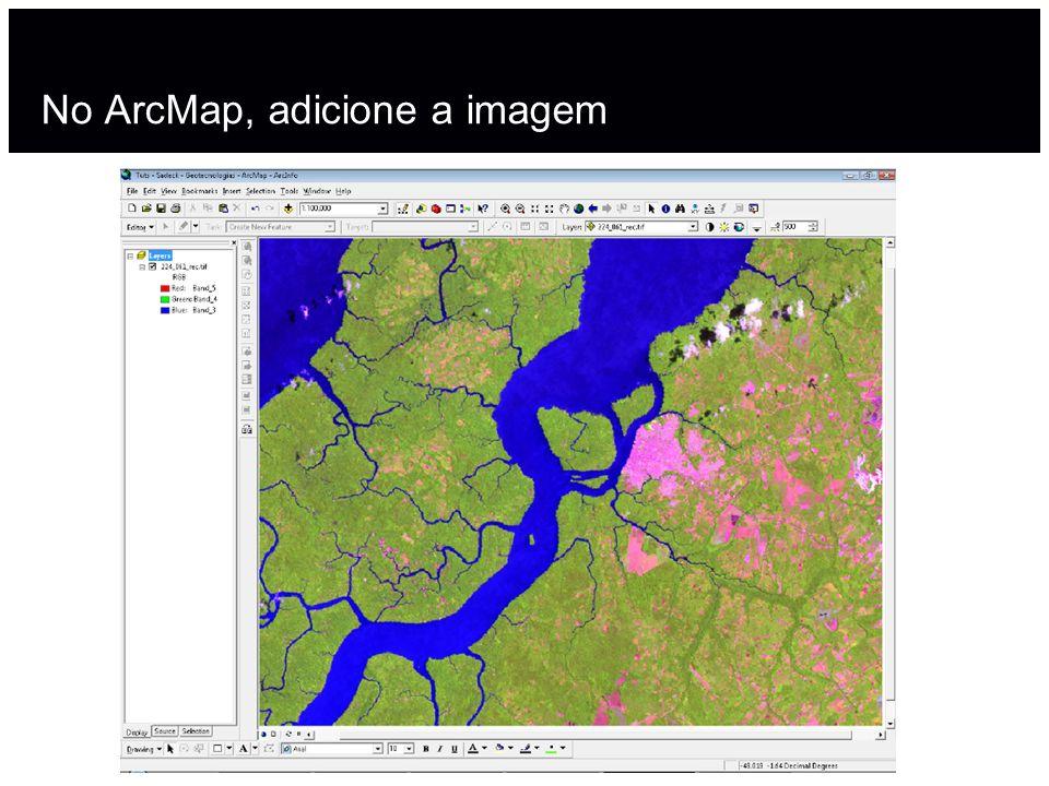 No ArcMap, adicione a imagem