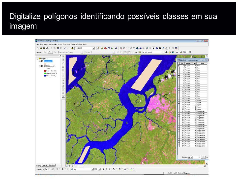 Digitalize polígonos identificando possíveis classes em sua imagem
