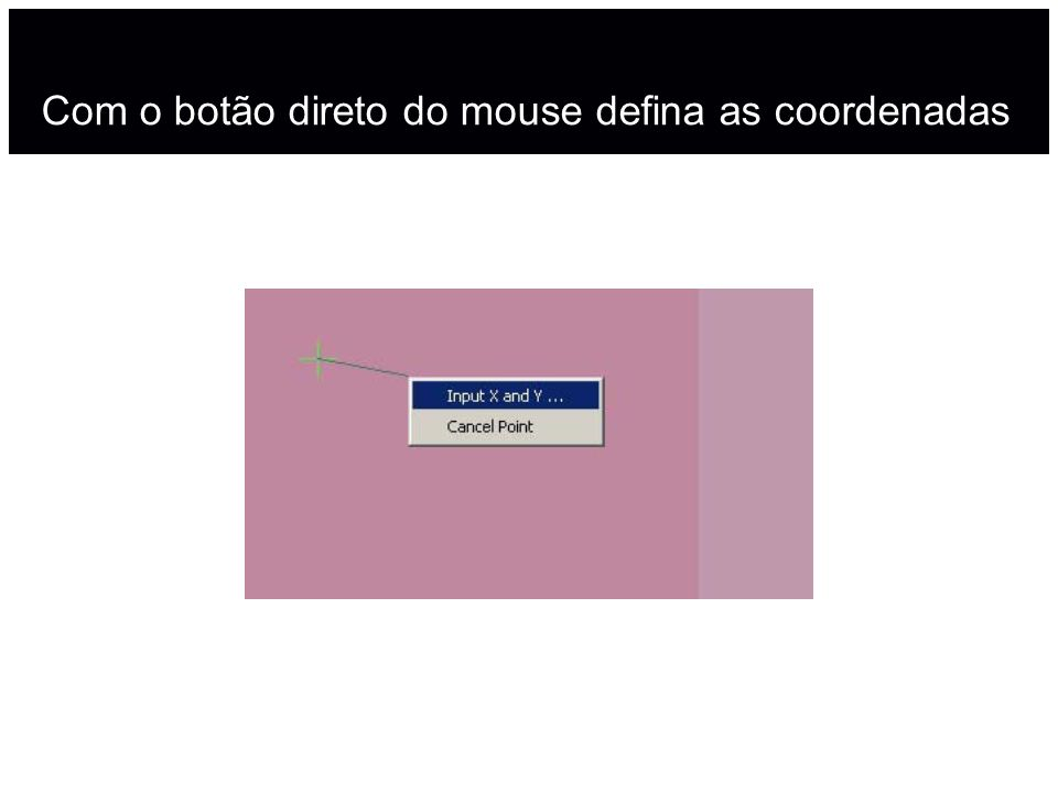 Com o botão direto do mouse defina as coordenadas