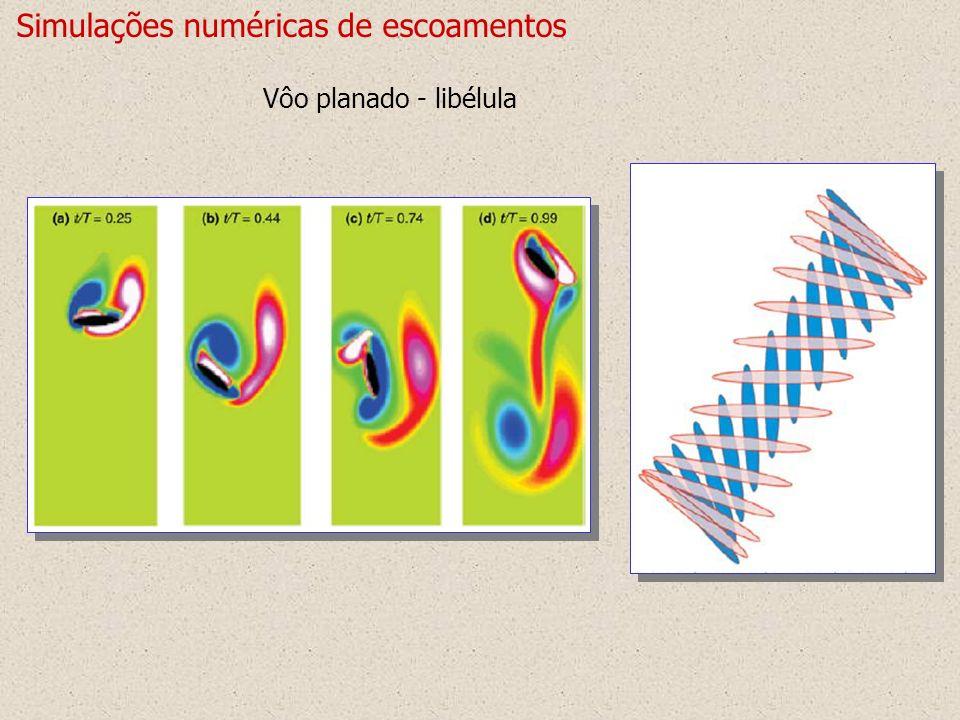 Simulações numéricas de escoamentos Vôo planado - libélula
