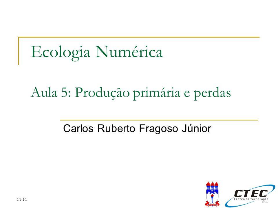 11:11 Ecologia Numérica Aula 5: Produção primária e perdas Carlos Ruberto Fragoso Júnior