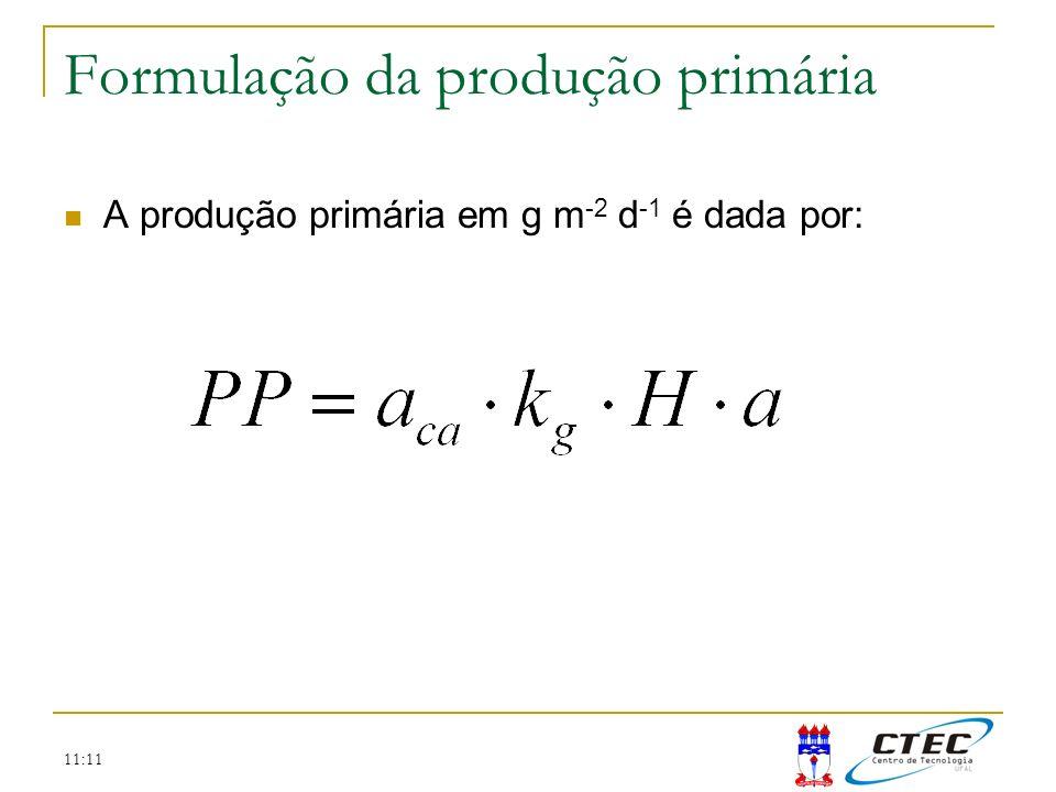 11:11 Formulação da produção primária A produção primária em g m -2 d -1 é dada por: