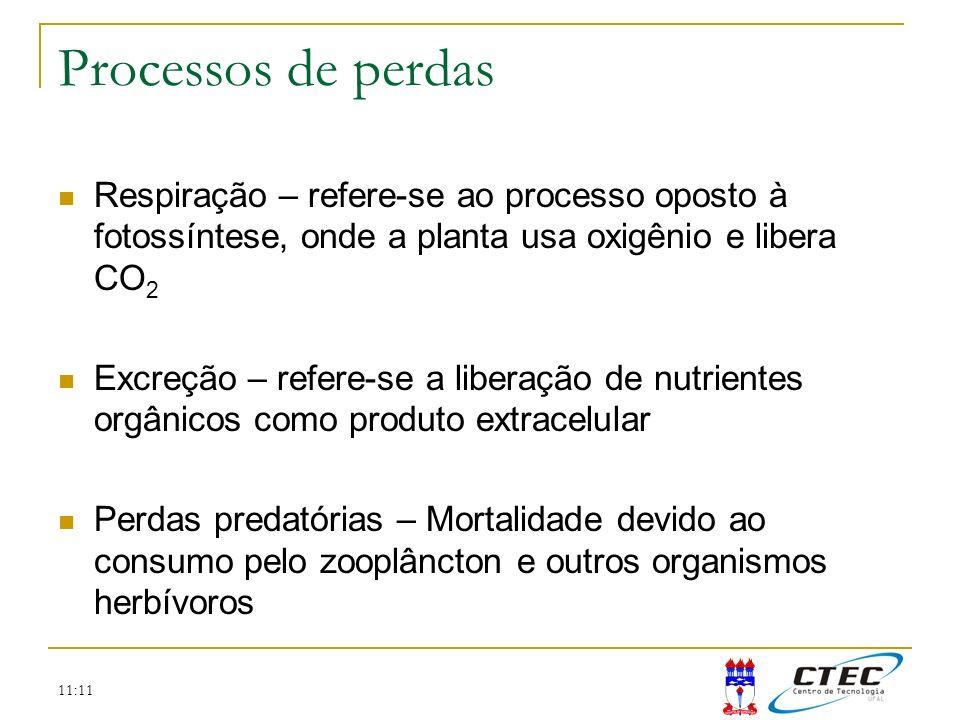 11:11 Processos de perdas Respiração – refere-se ao processo oposto à fotossíntese, onde a planta usa oxigênio e libera CO 2 Excreção – refere-se a li