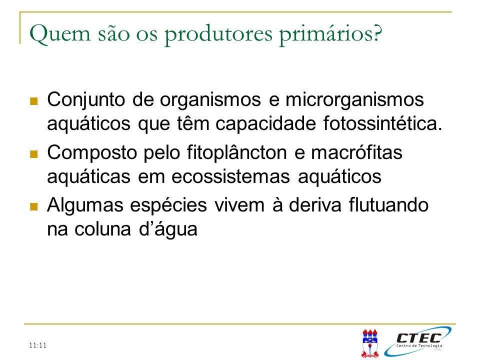 11:11 Importância do conhecimento da produção primária Aproximadamente 50% do oxigênio da atmosfera provêm da produção primária aquática.