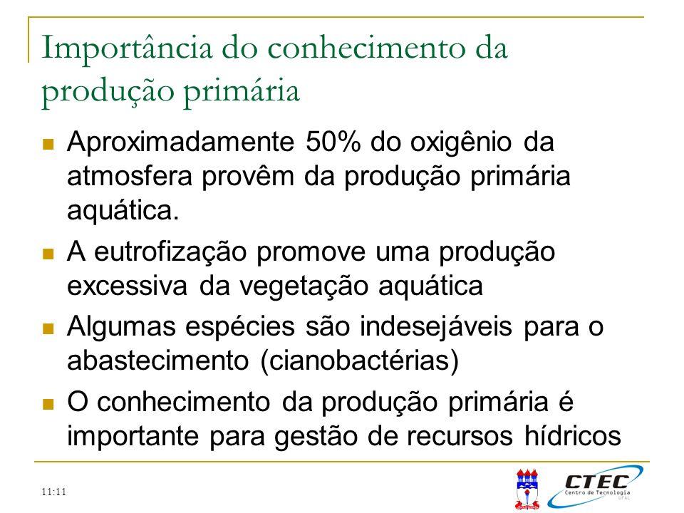 11:11 Importância do conhecimento da produção primária Aproximadamente 50% do oxigênio da atmosfera provêm da produção primária aquática. A eutrofizaç