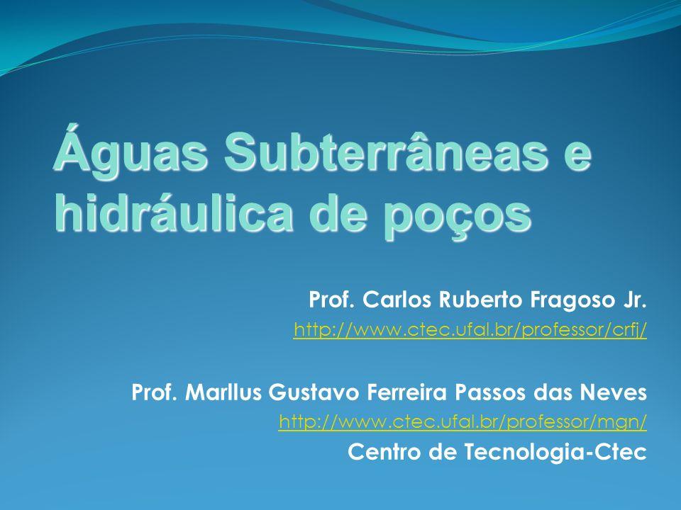 Prof. Carlos Ruberto Fragoso Jr. http://www.ctec.ufal.br/professor/crfj/ Prof. Marllus Gustavo Ferreira Passos das Neves http://www.ctec.ufal.br/profe