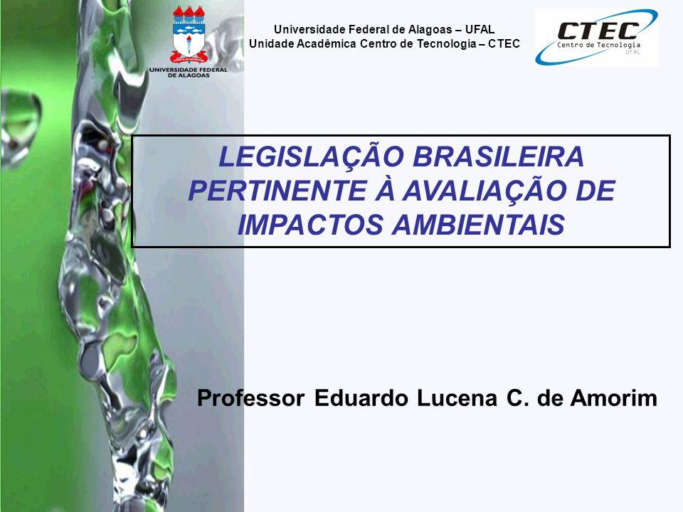 Professor Eduardo Lucena C.