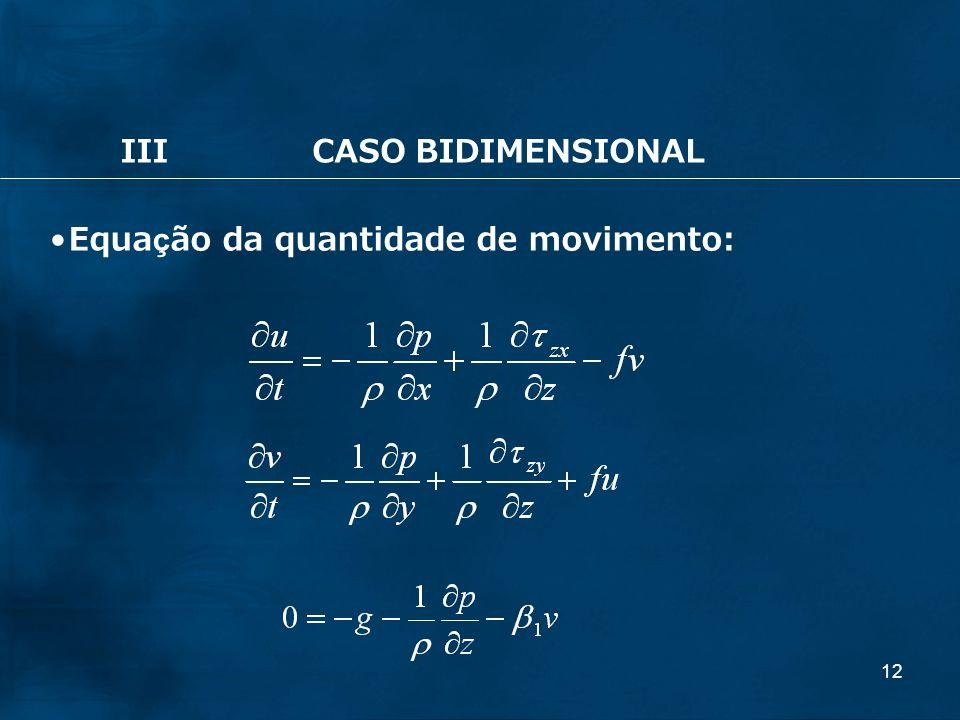 12 IIICASO BIDIMENSIONAL Equação da quantidade de movimento: