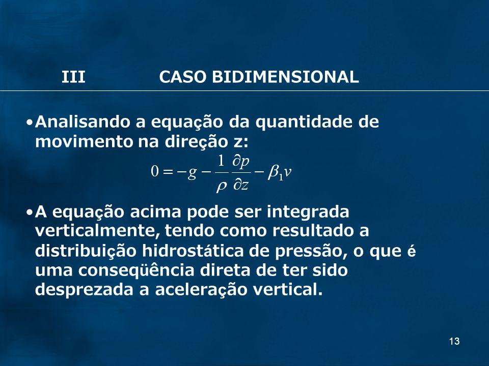 13 IIICASO BIDIMENSIONAL Analisando a equação da quantidade de movimento na direção z: A equação acima pode ser integrada verticalmente, tendo como re
