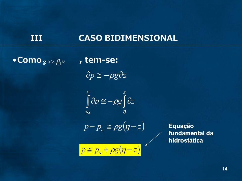14 IIICASO BIDIMENSIONAL Como, tem-se: Equação fundamental da hidrostática
