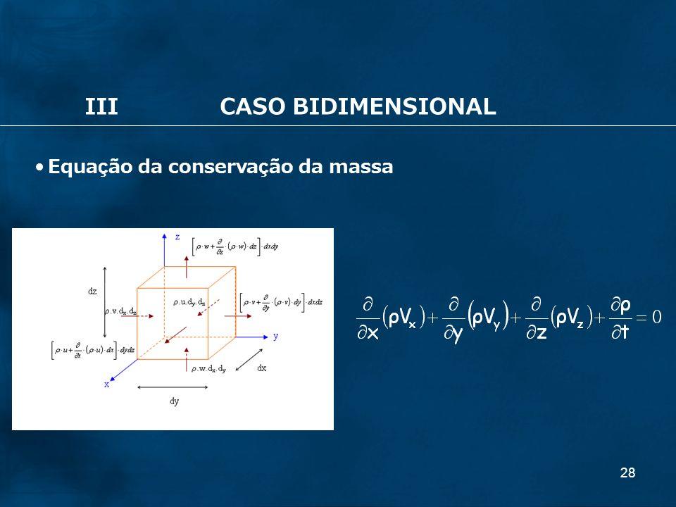 28 IIICASO BIDIMENSIONAL Equação da conservação da massa