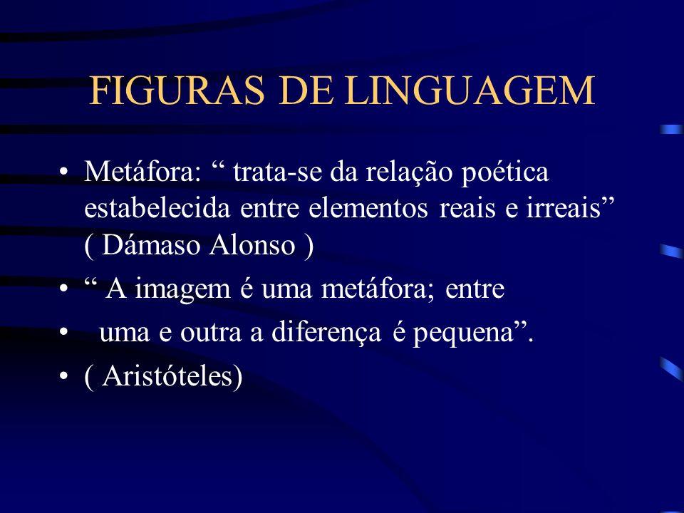 FIGURAS DE LINGUAGEM Metáfora: trata-se da relação poética estabelecida entre elementos reais e irreais ( Dámaso Alonso ) A imagem é uma metáfora; entre uma e outra a diferença é pequena.
