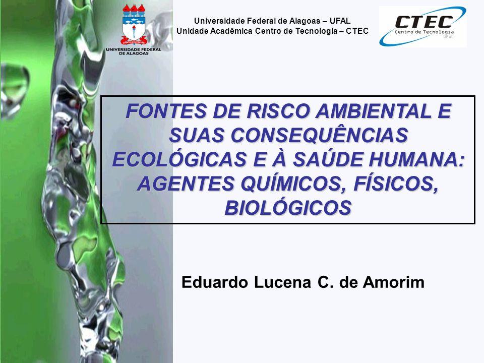Eduardo Lucena C. de Amorim Universidade Federal de Alagoas – UFAL Unidade Acadêmica Centro de Tecnologia – CTEC FONTES DE RISCO AMBIENTAL E SUAS CONS