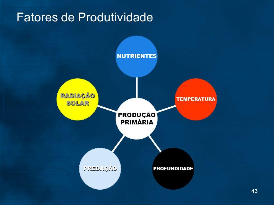 43 PRODUÇÃO PRIMÁRIA RADIAÇÃOSOLAR TEMPERATURAPROFUNDIDADEPREDAÇÃONUTRIENTES Fatores de Produtividade