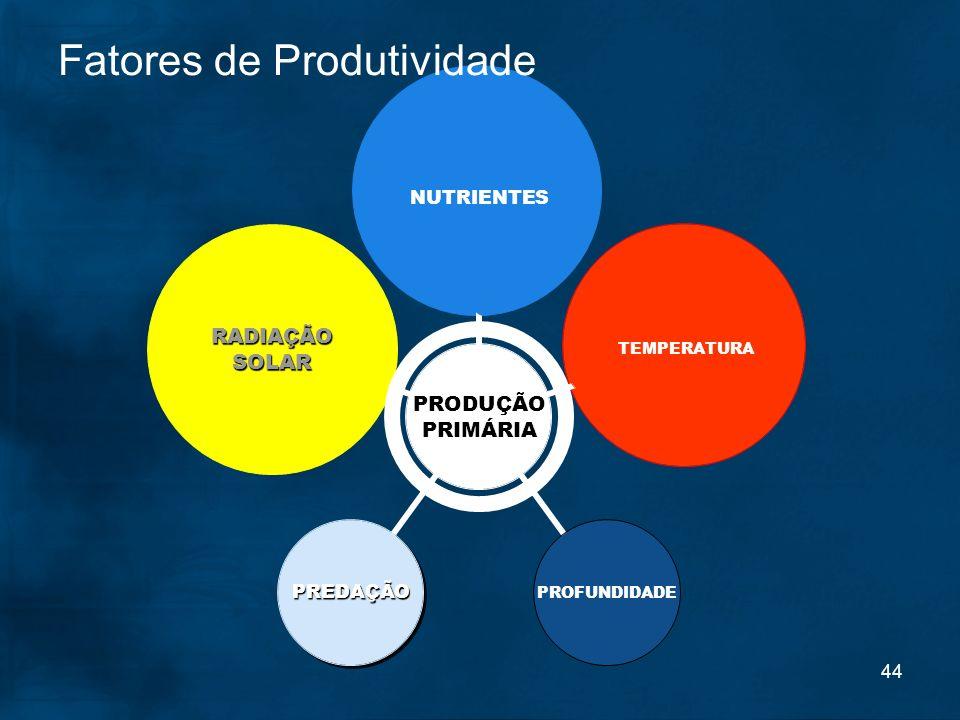 44 Fatores de Produtividade