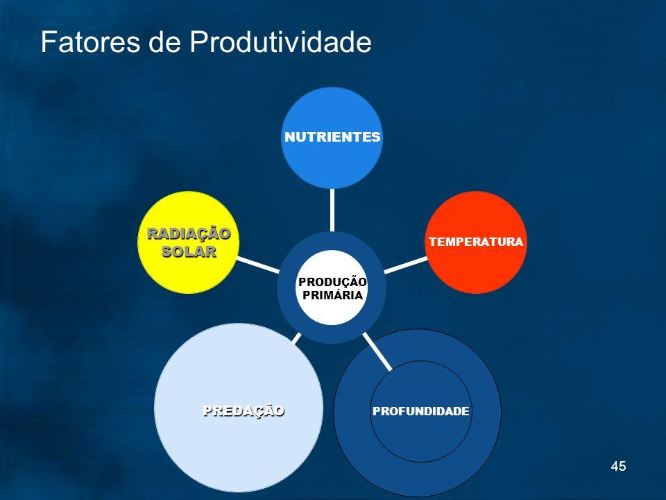 45 Fatores de Produtividade