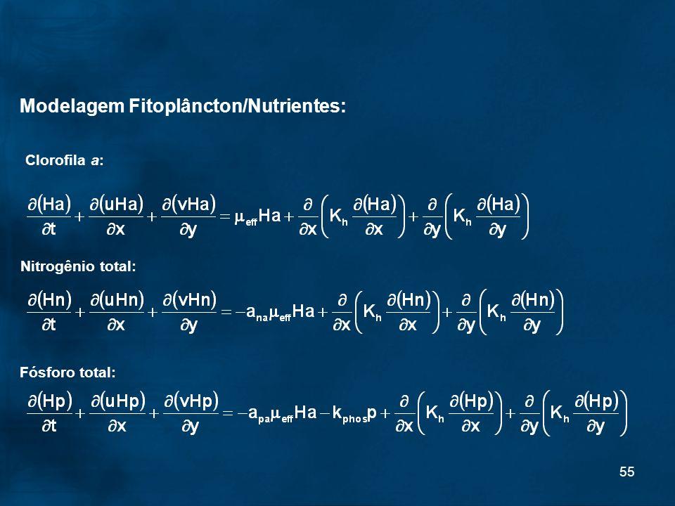 55 Modelagem Fitoplâncton/Nutrientes: Clorofila a: Nitrogênio total: Fósforo total: