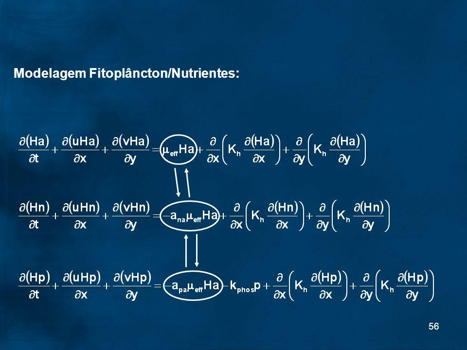 56 Modelagem Fitoplâncton/Nutrientes: