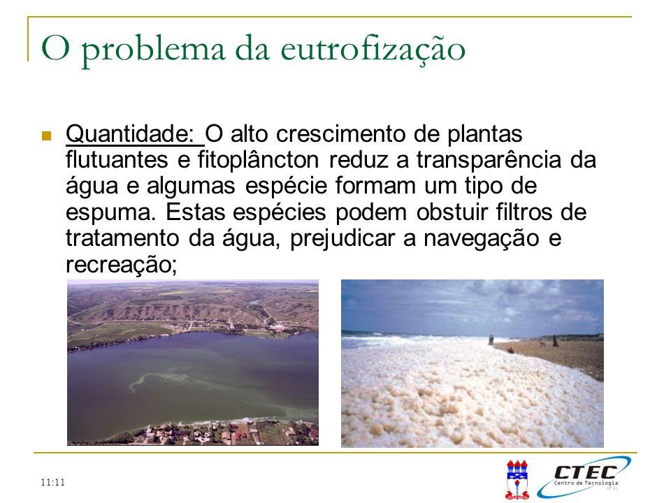 11:11 Quantidade: O alto crescimento de plantas flutuantes e fitoplâncton reduz a transparência da água e algumas espécie formam um tipo de espuma. Es
