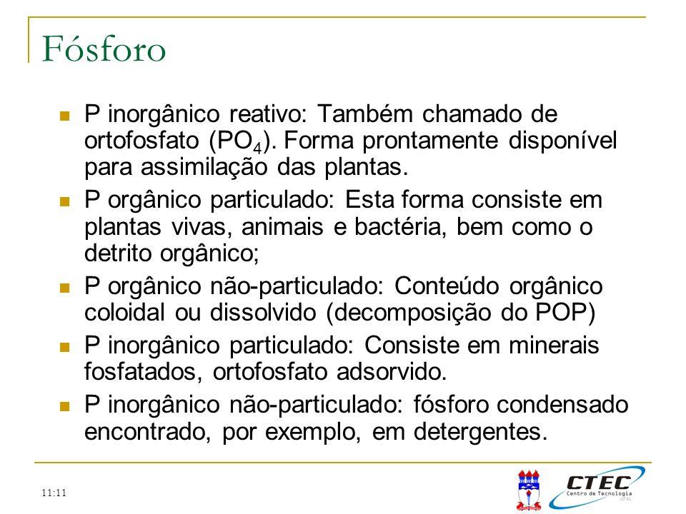 11:11 P inorgânico reativo: Também chamado de ortofosfato (PO 4 ). Forma prontamente disponível para assimilação das plantas. P orgânico particulado: