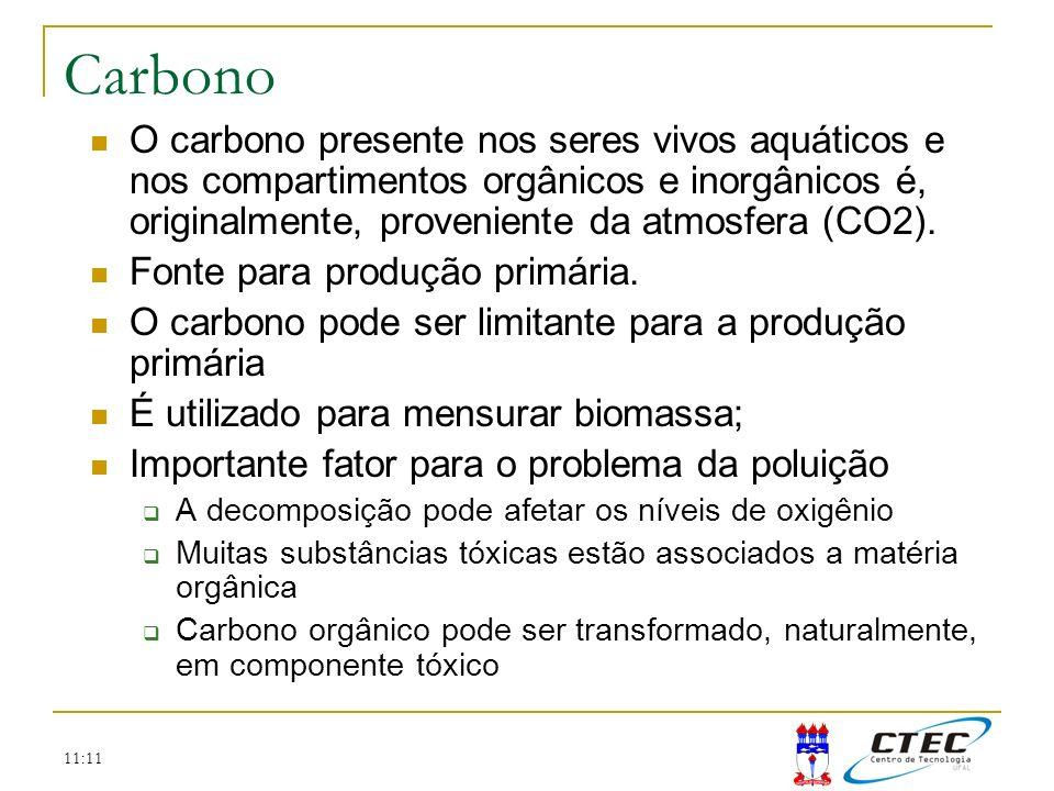11:11 O carbono presente nos seres vivos aquáticos e nos compartimentos orgânicos e inorgânicos é, originalmente, proveniente da atmosfera (CO2). Font