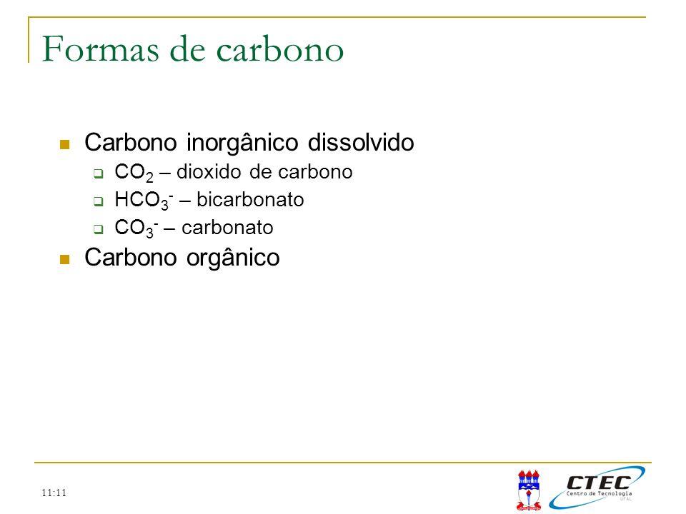 11:11 Carbono inorgânico dissolvido CO 2 – dioxido de carbono HCO 3 - – bicarbonato CO 3 - – carbonato Carbono orgânico Formas de carbono