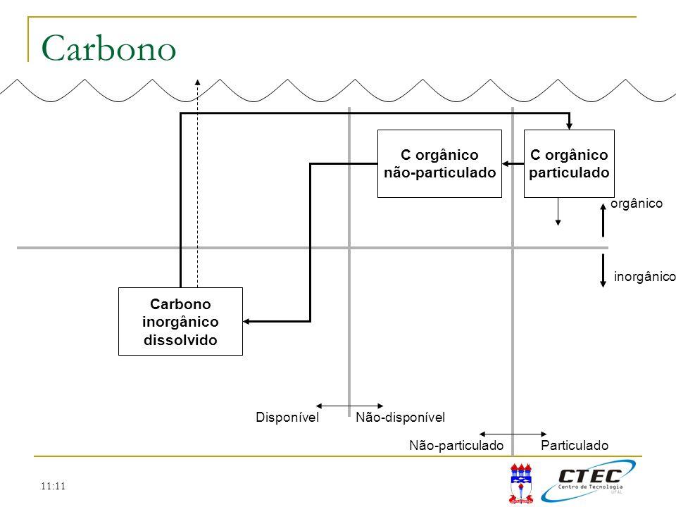 11:11 Carbono C orgânico não-particulado C orgânico particulado Carbono inorgânico dissolvido orgânico inorgânico DisponívelNão-disponível Não-particu