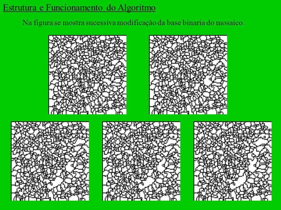 Na figura se mostra sucessiva modificação da base binaria do mosaico. Estrutura e Funcionamento do Algoritmo