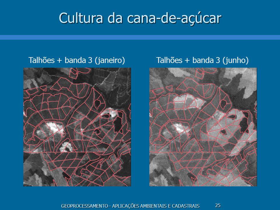 GEOPROCESSAMENTO - APLICAÇÕES AMBIENTAIS E CADASTRAIS 25 Cultura da cana-de-açúcar Talhões + banda 3 (janeiro) Talhões + banda 3 (junho)