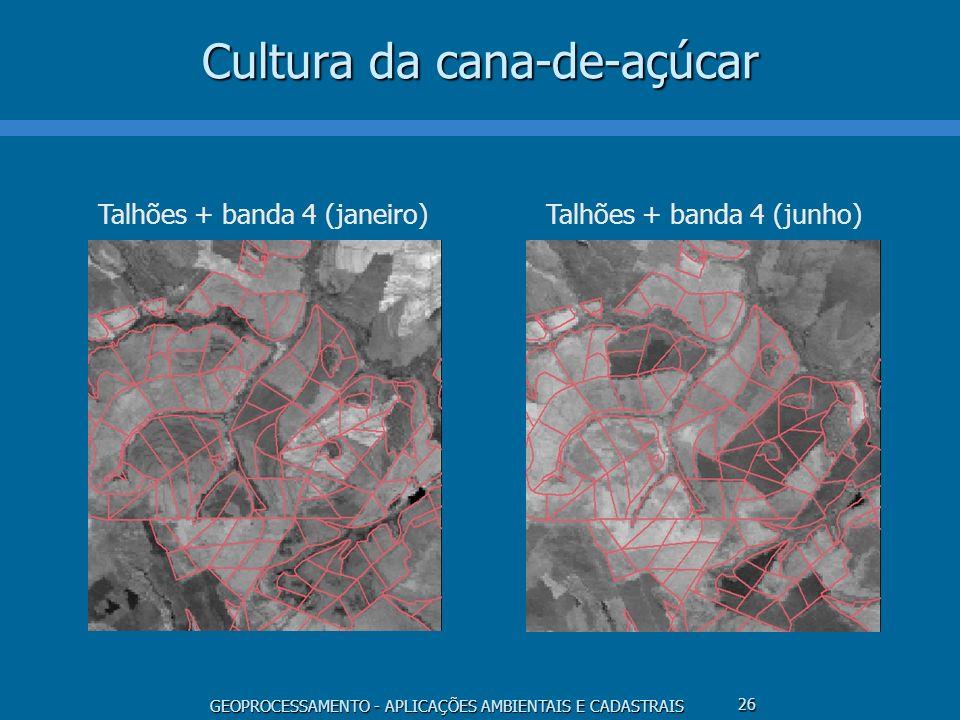 GEOPROCESSAMENTO - APLICAÇÕES AMBIENTAIS E CADASTRAIS 26 Cultura da cana-de-açúcar Talhões + banda 4 (janeiro)Talhões + banda 4 (junho)