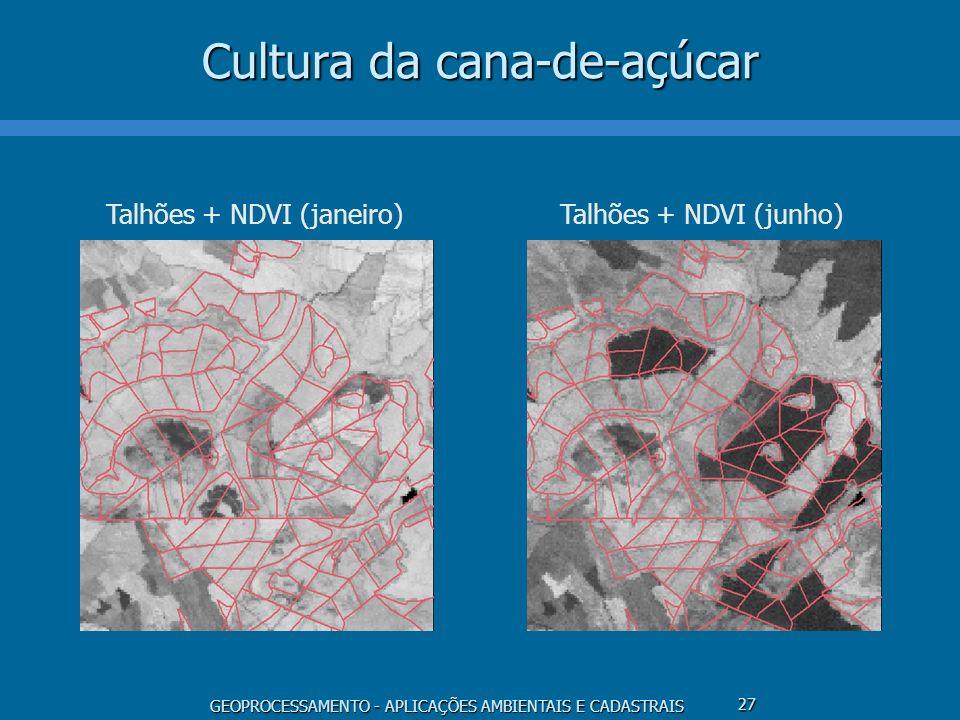 GEOPROCESSAMENTO - APLICAÇÕES AMBIENTAIS E CADASTRAIS 27 Cultura da cana-de-açúcar Talhões + NDVI (janeiro) Talhões + NDVI (junho)