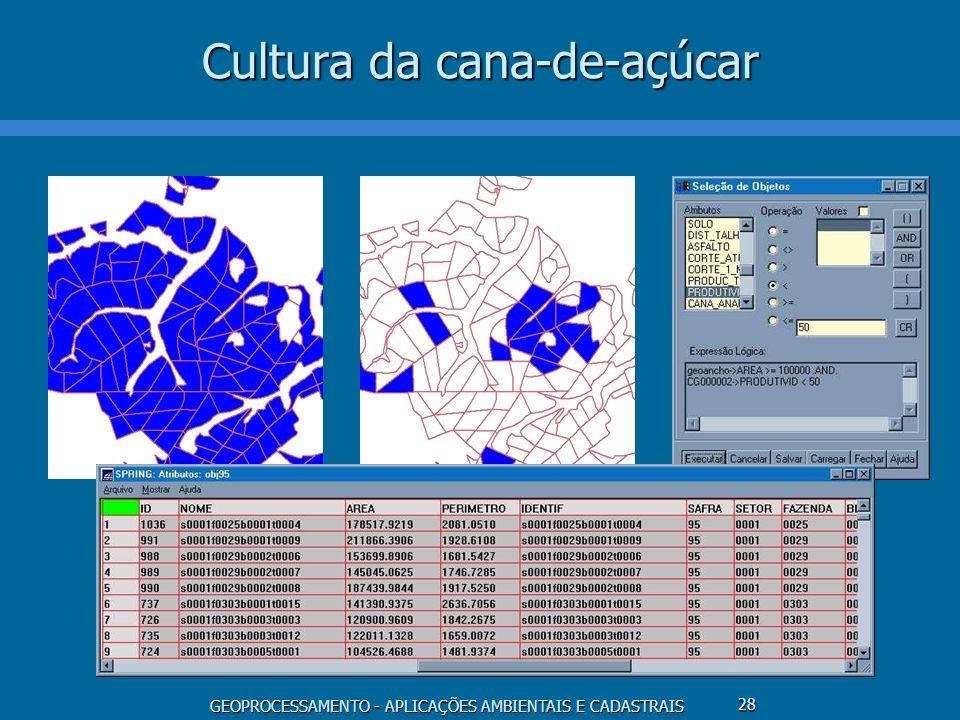 GEOPROCESSAMENTO - APLICAÇÕES AMBIENTAIS E CADASTRAIS 28 Cultura da cana-de-açúcar