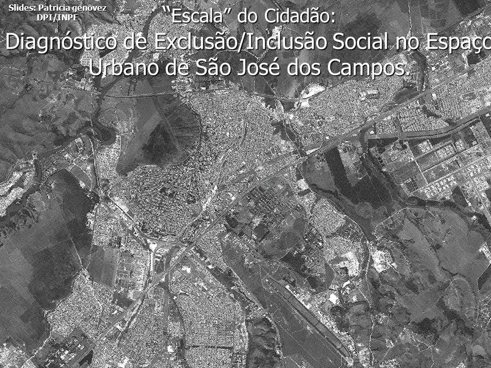 DPI/INPE Escala do Cidadão: Diagnóstico de Exclusão/Inclusão Social no Espaço Urbano de São José dos Campos. Escala do Cidadão: Diagnóstico de Exclusã