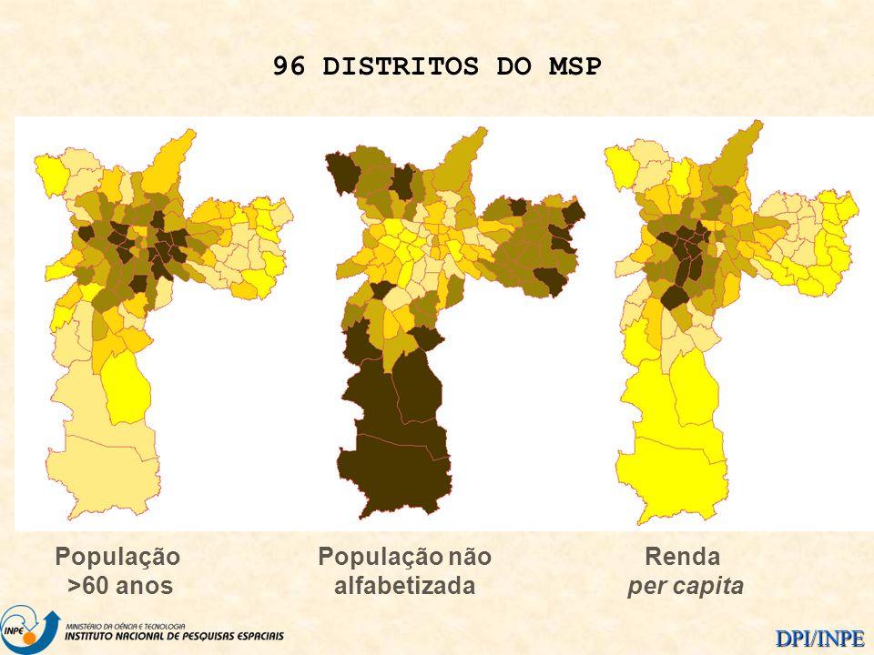 DPI/INPE População >60 anos População não alfabetizada Renda per capita 96 DISTRITOS DO MSP