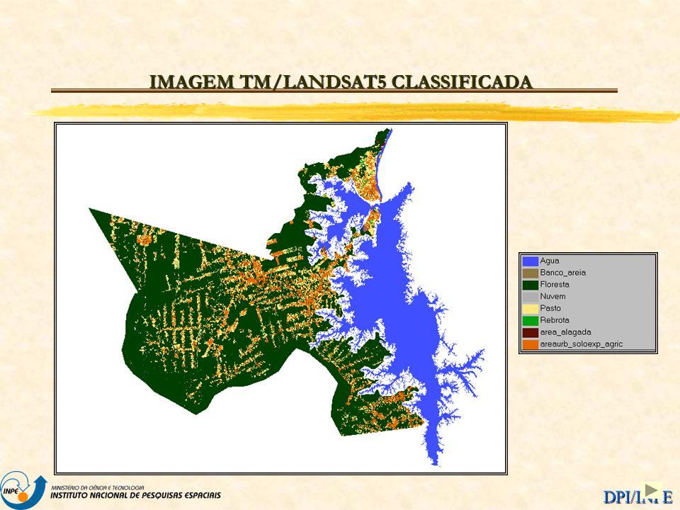 DPI/INPE IMAGEM TM/LANDSAT5 CLASSIFICADA