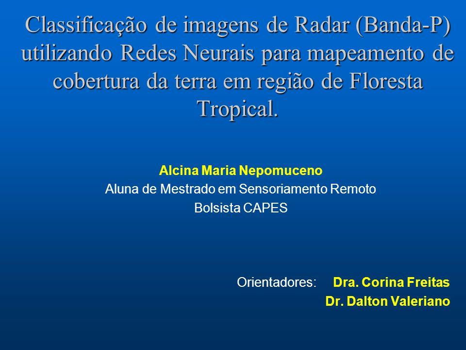 Classificação de imagens de Radar (Banda-P) utilizando Redes Neurais para mapeamento de cobertura da terra em região de Floresta Tropical. Alcina Mari