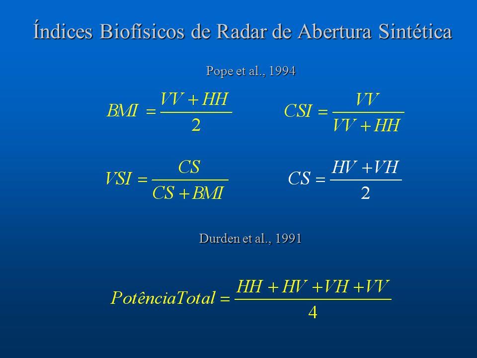 Índices Biofísicos de Radar de Abertura Sintética Pope et al., 1994 Durden et al., 1991