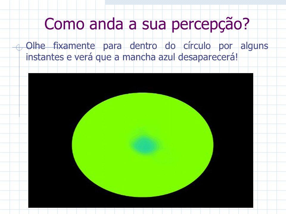 25 25 25 Como anda a sua percepção? Olhe fixamente para dentro do círculo por alguns instantes e verá que a mancha azul desaparecerá!
