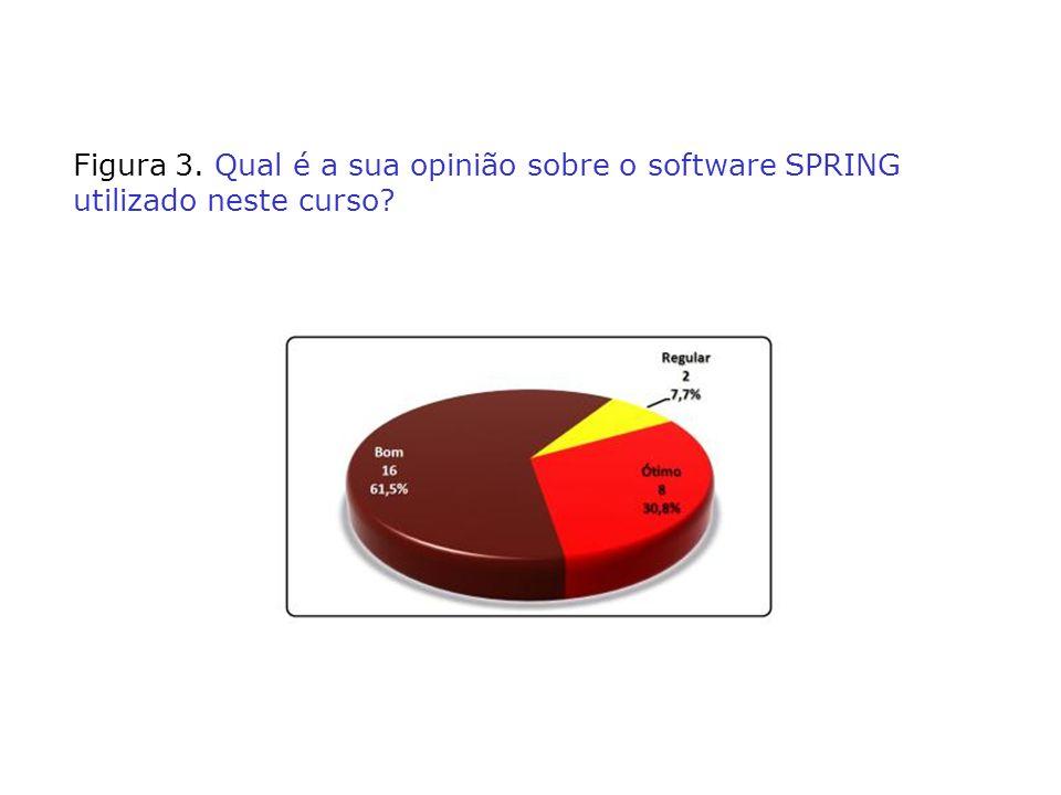 Figura 3. Qual é a sua opinião sobre o software SPRING utilizado neste curso?