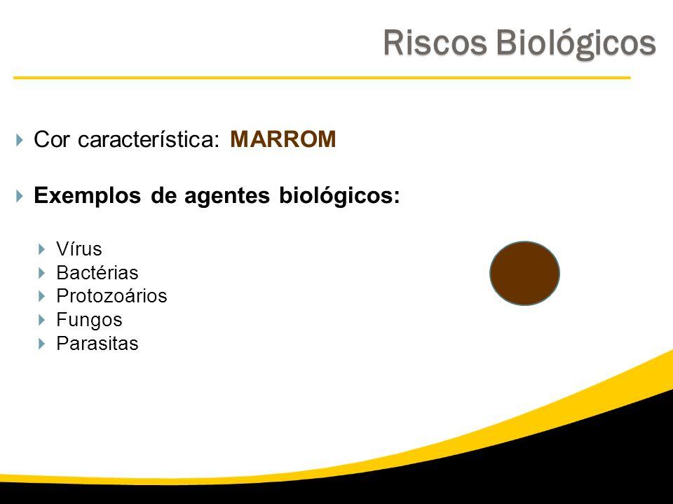 Cor característica: MARROM Exemplos de agentes biológicos: Vírus Bactérias Protozoários Fungos Parasitas Riscos Biológicos Riscos Biológicos